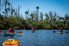 Homosassa-River-2020-19